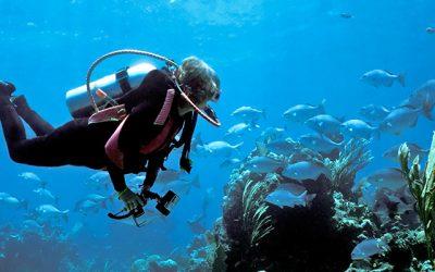 Enhancing diver safe...