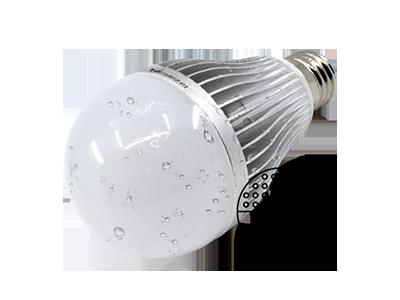 Dual AC/DC Utility LED Bulb